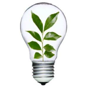 Bureaux à louer Tassin - Eco energie vert. Des Bureaux Verts qui n'ont pas que le nom